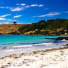 Boat Harbour Beach, Tasmania by Elana Bailey