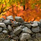 Stone Wall Jericho Center, VT by George Robinson
