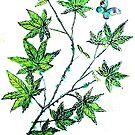 Maple Leaf Dance by Linda Callaghan