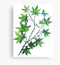 Maple Leaf Dance Canvas Print