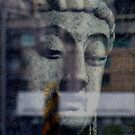 Do not dwell in the past, do not dream of the future, concentrate the mind on the present moment. Buddha  by Digby