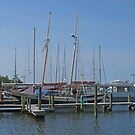 Manteo Harbor by Monnie Ryan