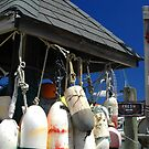 Hanging with the Buoys by OntheroadImage