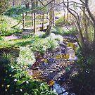 Woodland Spring  by Paula Oakley