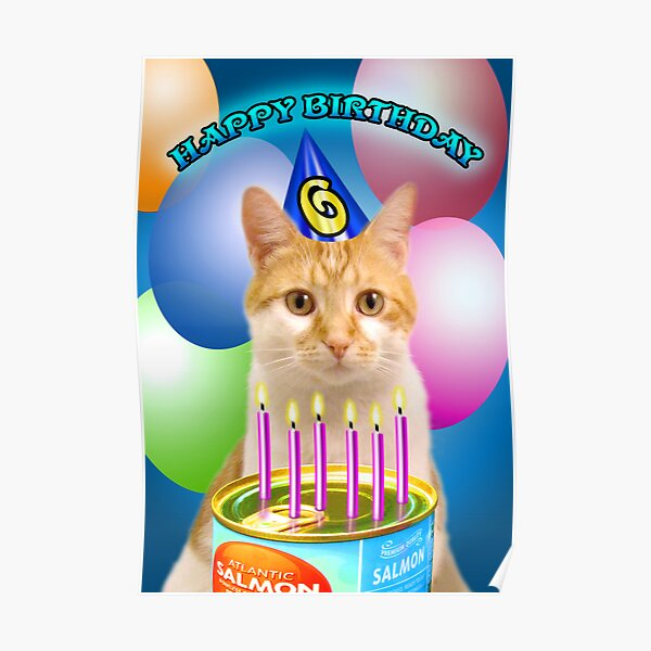 Birthday Wishes Age 6 Poster