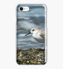 Shorebird iPhone Case/Skin
