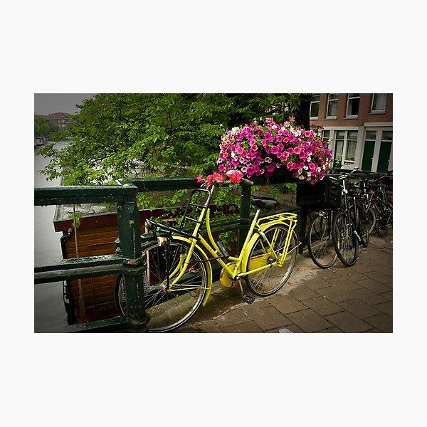 Yellow bike and pink flowers Photographic Print