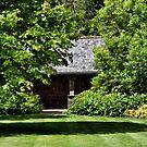 Winter Garden, Rosemoor RHS Gardens, Devon by Squealia