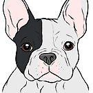 White and Black French Bulldog  by rmcbuckeye