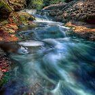 My Creek by Ian English