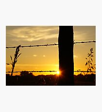 Sunrise fencepost with more color Photographic Print