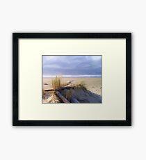 Newport Oregon Summer Beach Framed Print
