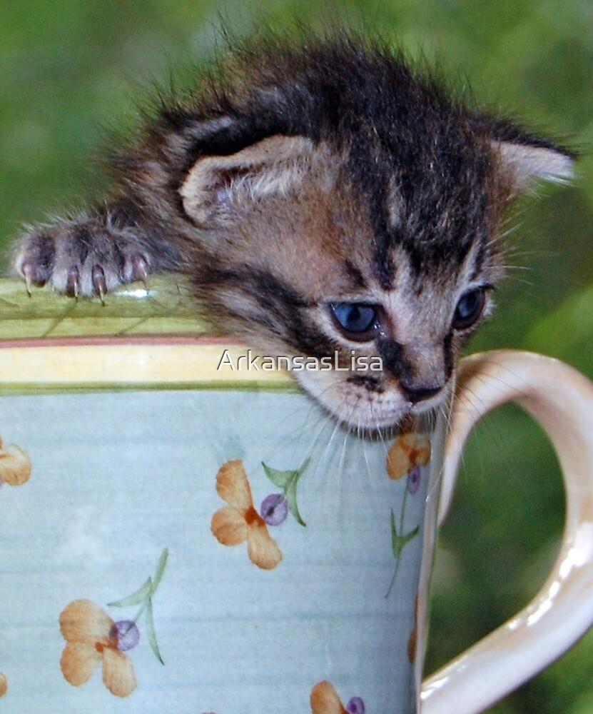 Kitty! by ArkansasLisa