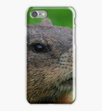 Woodchuck Profile iPhone Case/Skin