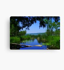 Tunnel Vision of Fumee Lake Canvas Print