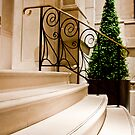 Front Steps by phil decocco