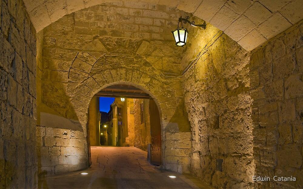 Mdina Malta Greek's Gate by Edwin  Catania