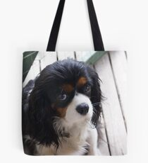 our dear little Darcy Tote Bag
