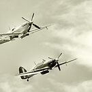 Spitfires by Mick Smith