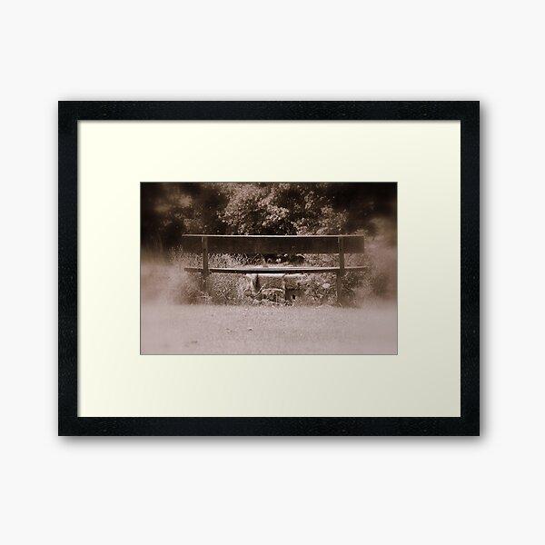 Silent Bench Framed Art Print