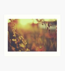 from the heart within, comes the joy., Art Print