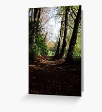 Forest path in autumn at Stourhead, a National Trust property Greeting Card
