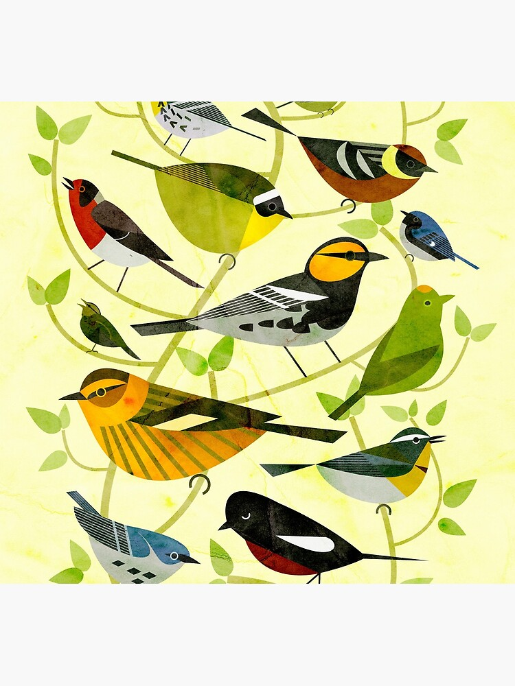 New World Warblers 2 by scottpartridge