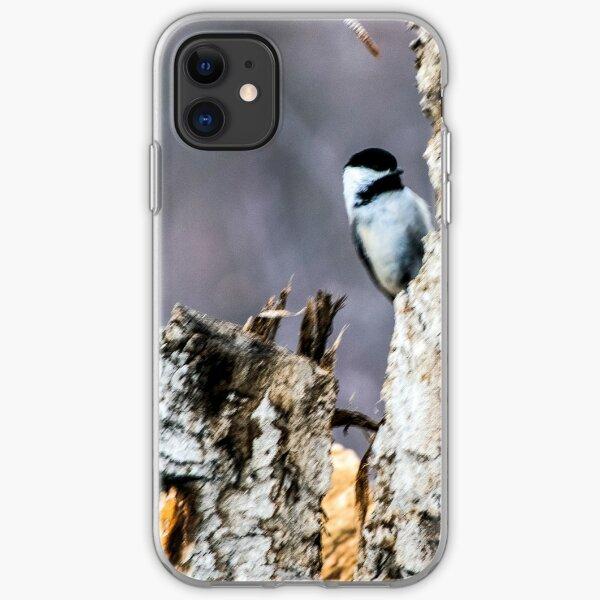 Chickadee posing. iPhone Soft Case