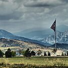 FLAG flying proudly! by Barb Miller