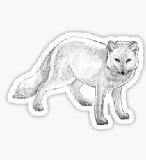 Arctic Fox Art Design - Pencil Sketch Sticker