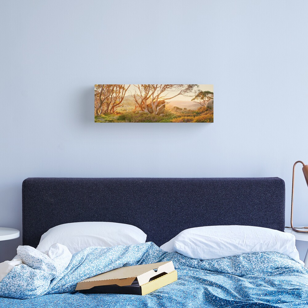 Charlotte Pass Trees, Kosciuszko, New South Wales, Australia Canvas Print
