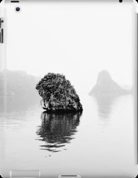 Lonely Rock by Ewan Arnolda