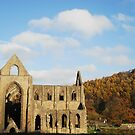 Tintern in Fall by Sophia Grace