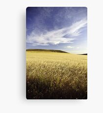 cereal Canvas Print