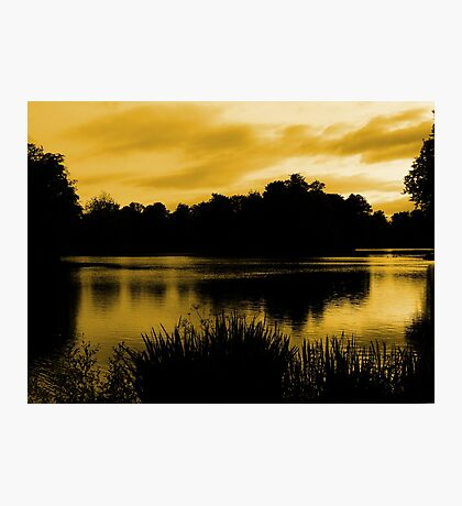 Reflections In Orange Photographic Print