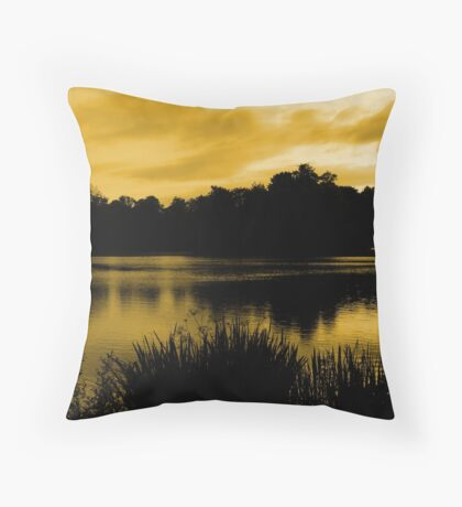 Reflections In Orange Throw Pillow