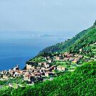 Tignale. Lake Garda. by Daidalos
