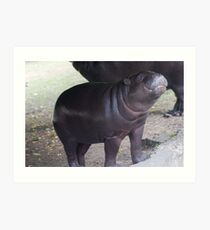 Smile - pygmy hippo baby with infectious grin Art Print