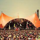 Roskilde Festival 2010 by Robert Drobek