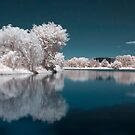 Candy Floss Lake II by Rob Smith