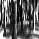 Nightmare Forest by David Piszczek