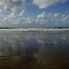 Land Sea Sky by Lynn Hughes