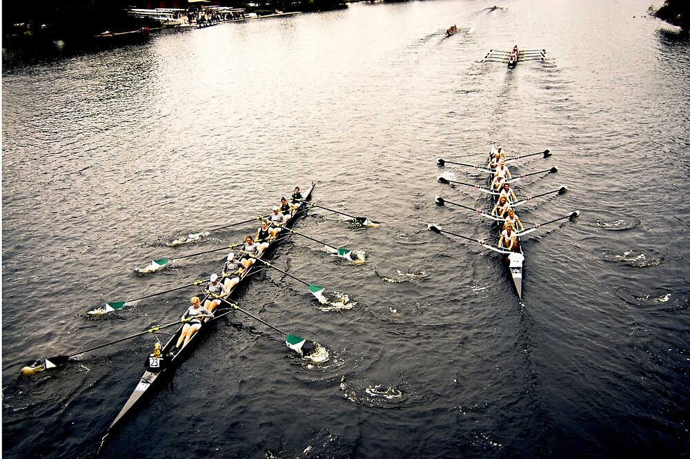 The Head Of The Charles Regatta 5 by d1373l