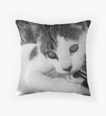 Kandid Kitty Throw Pillow
