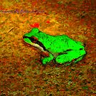 Kiss  My Frog photography. by becca2425