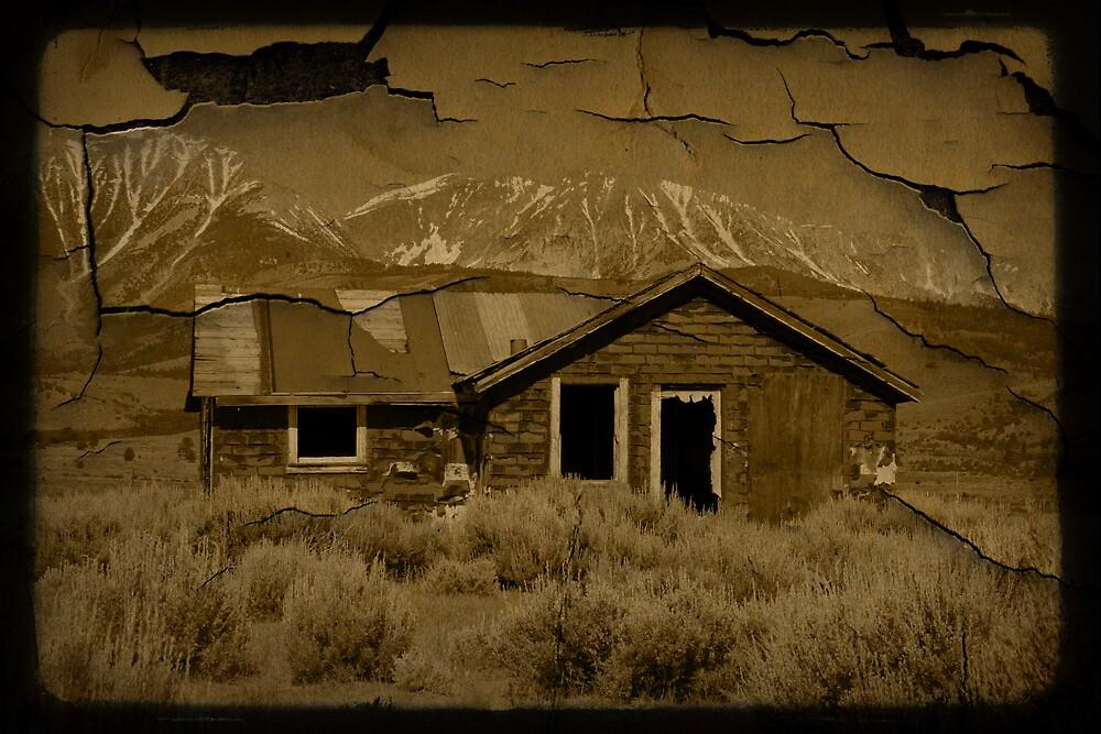 Home on the Range  by Cody  VanDyke