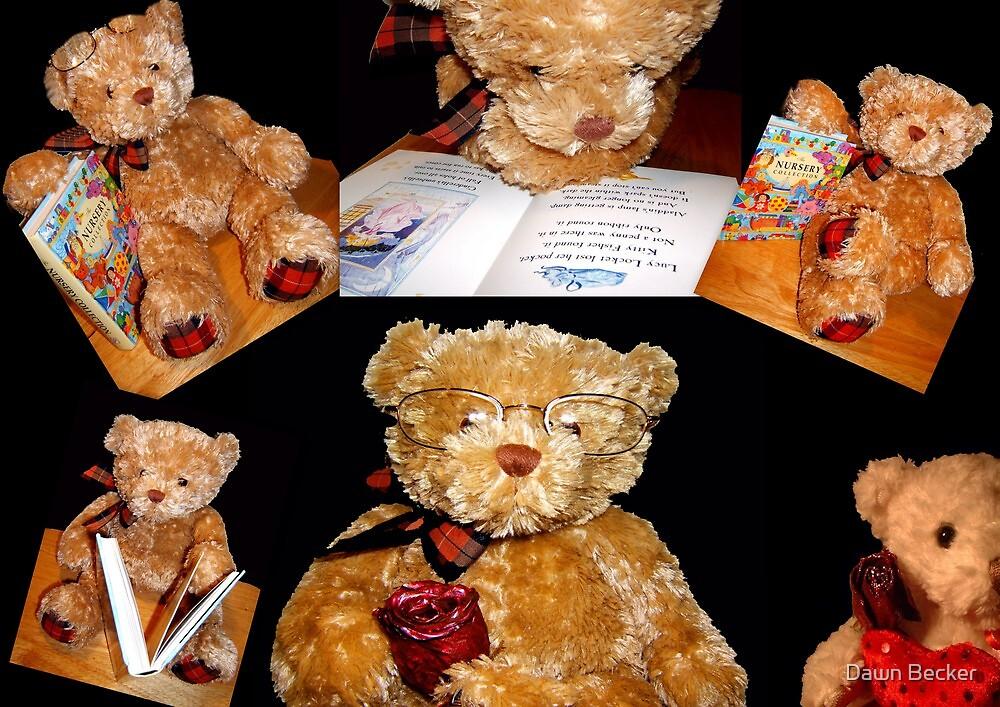 Teddy © by Dawn Becker