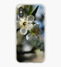 Greengage blossom iPhone Case