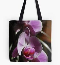 Orchids in sunlight Tote Bag