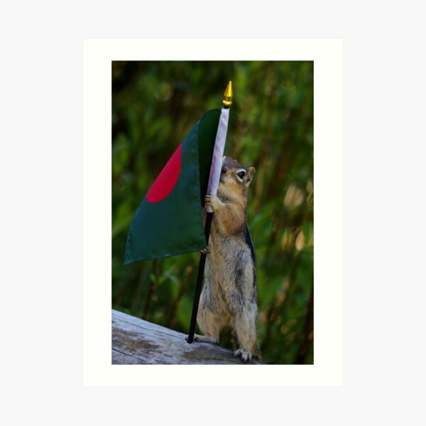 Jasper With The Flag of Bangladesh Art Print